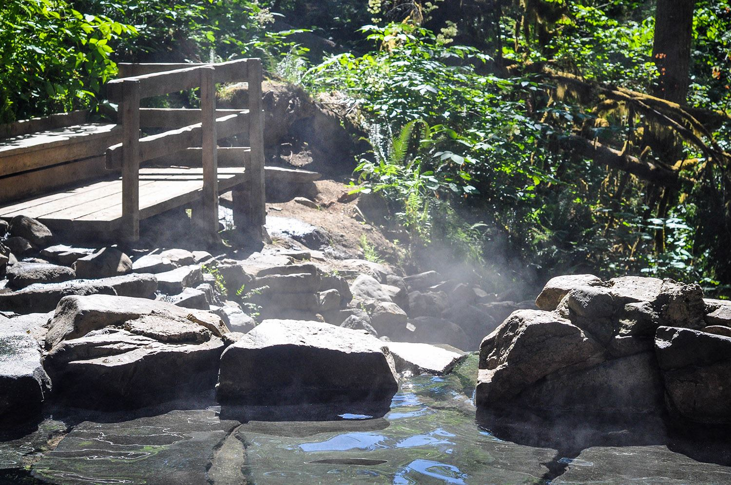 Things to Do in Oregon Cougar Hot Springs Williamette National Forest