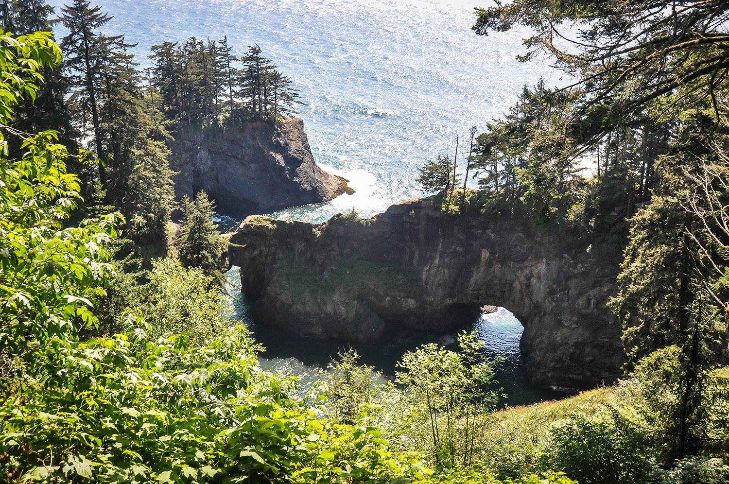 Things to do in Oregon Samuel H. Boardman State Scenic Corridor