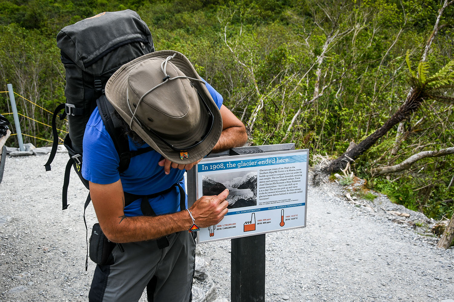 Things to Do in West Coast Franz Josef Glacier Tour Guide