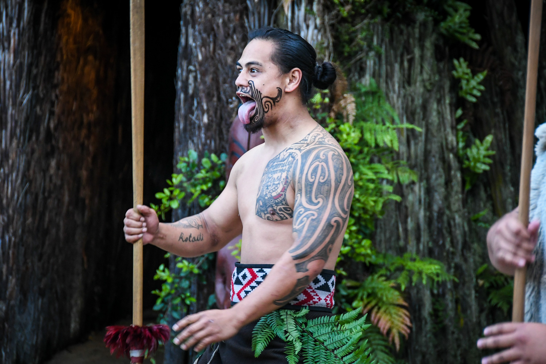 Top Things to Do in New Zealand Tamaki Maori Village Haka