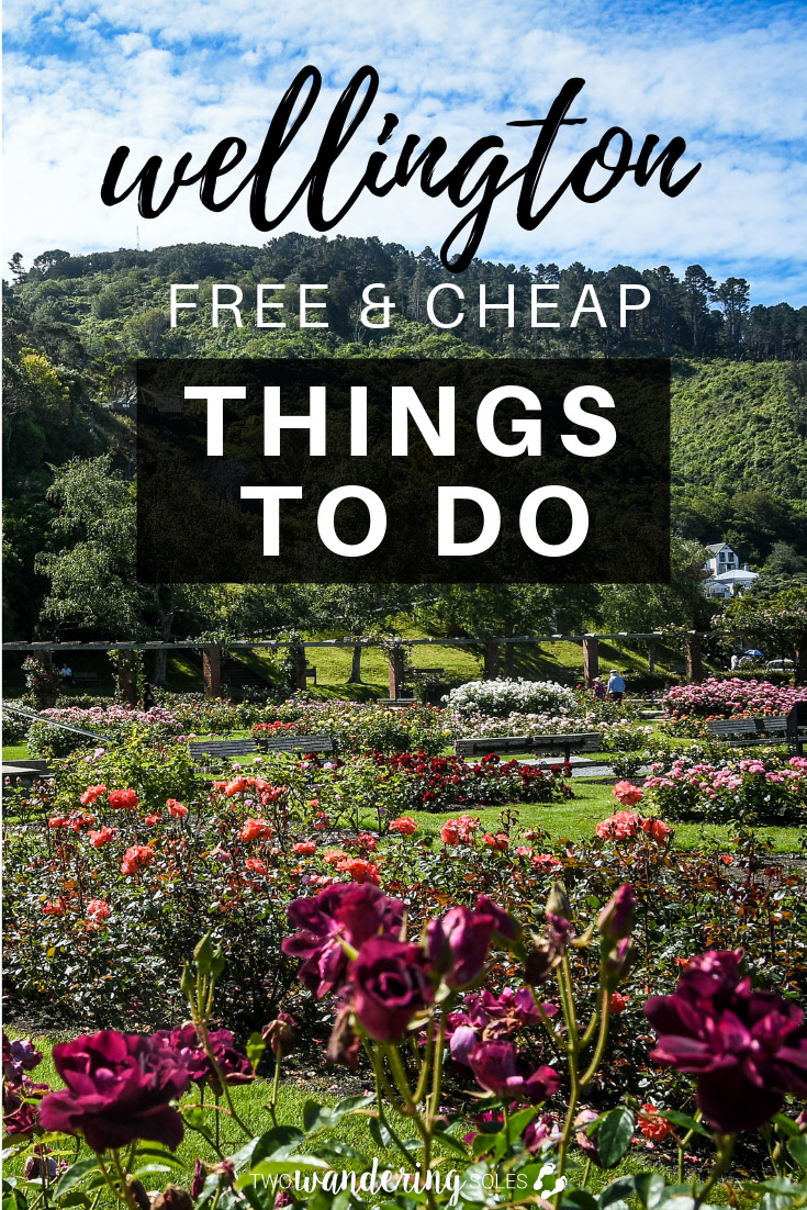 Free and Cheap Things to Do in Wellington New Zealand