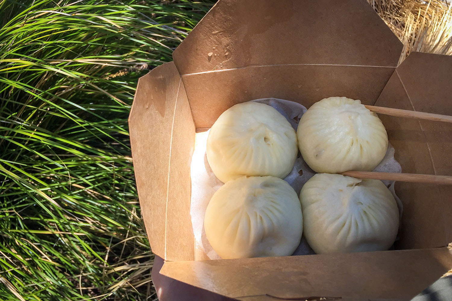 Things to do in Auckland Bao Buns