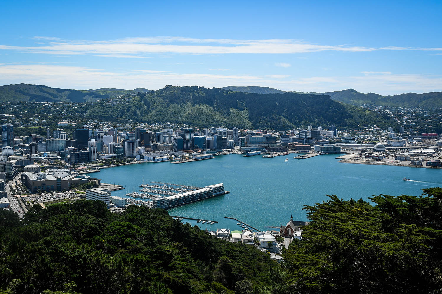 Things to do in Wellington New Zealand Mount Victoria Lookout
