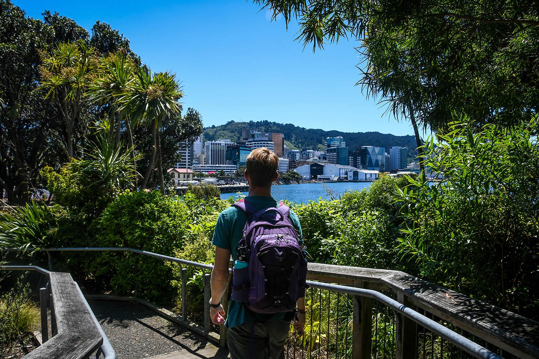 Things to Do in Wellington Te Papa Walkway