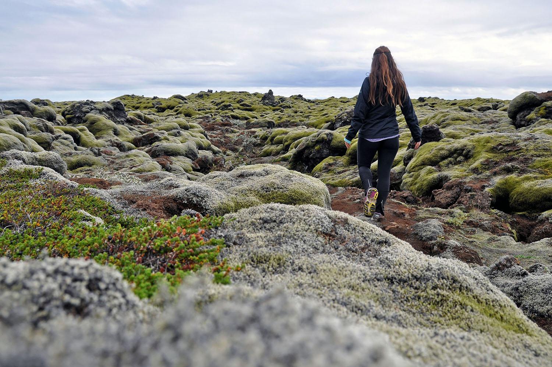 Iceland Rental Cars Mossy Green Fragile Land