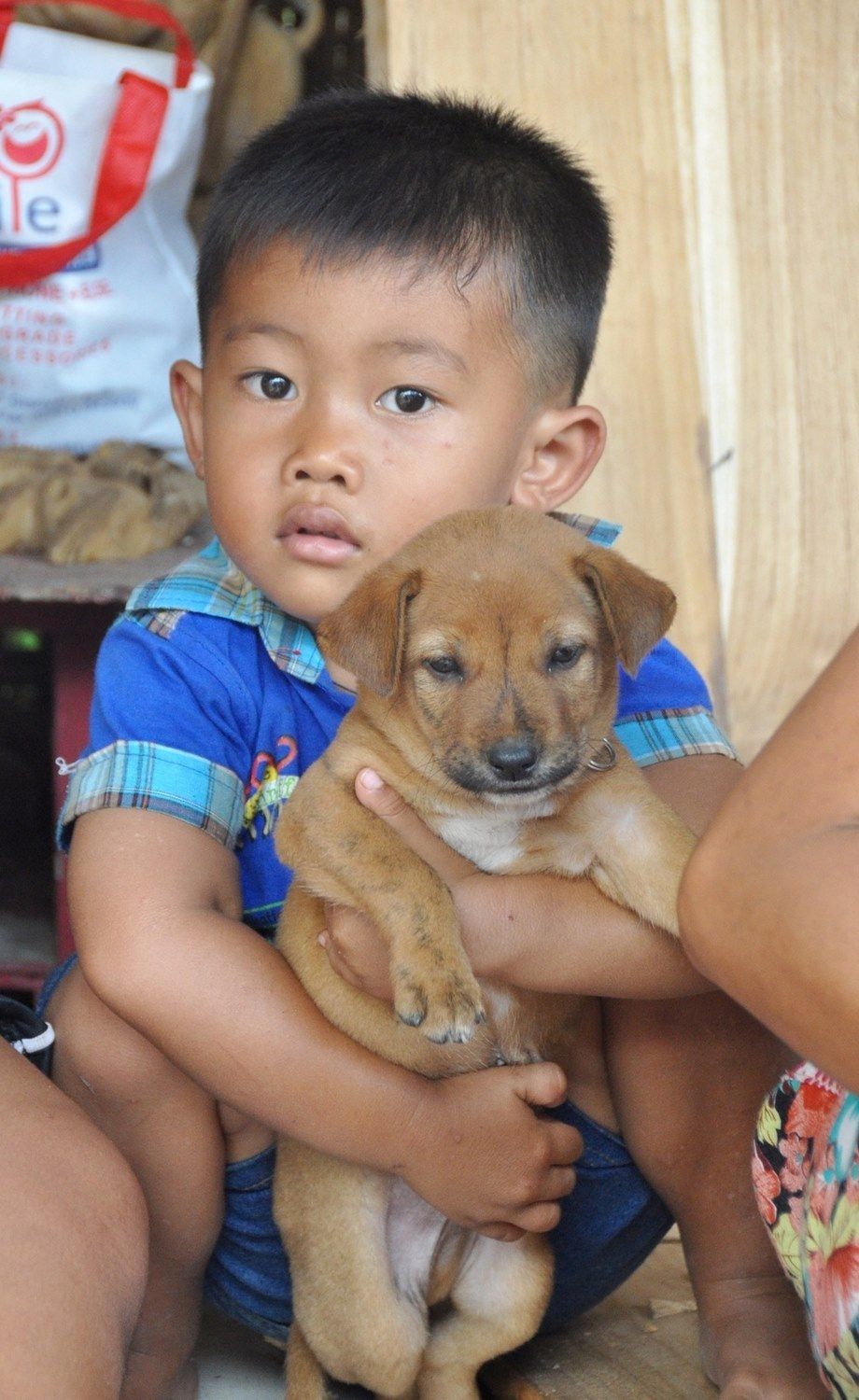 Balinese boy and dog
