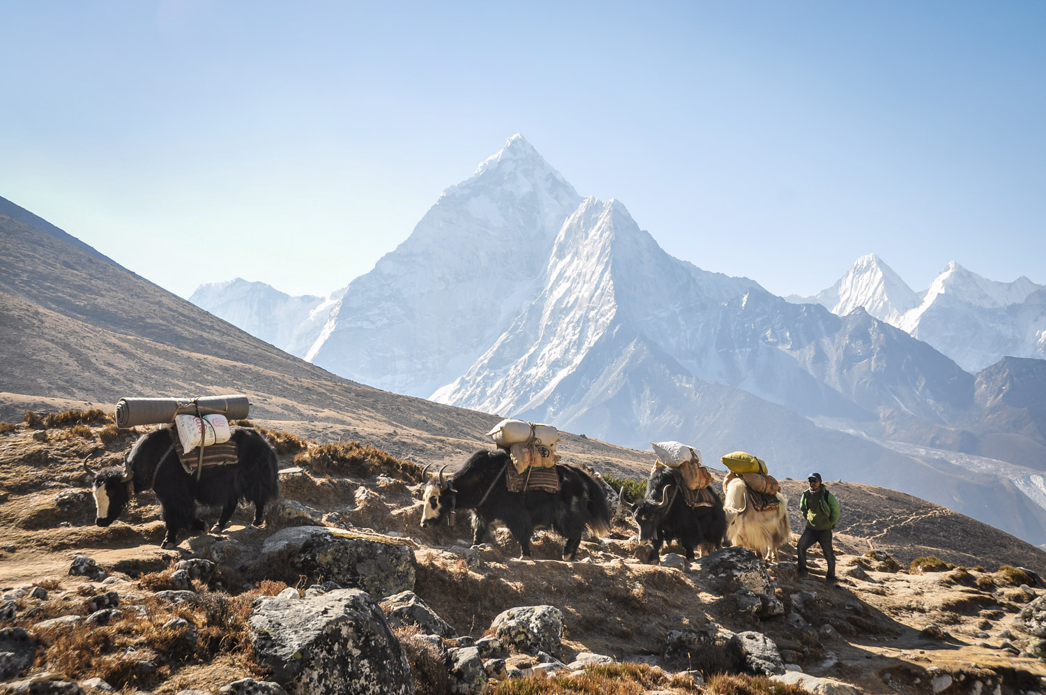 Nepal Travel Guide Facts about Nepal