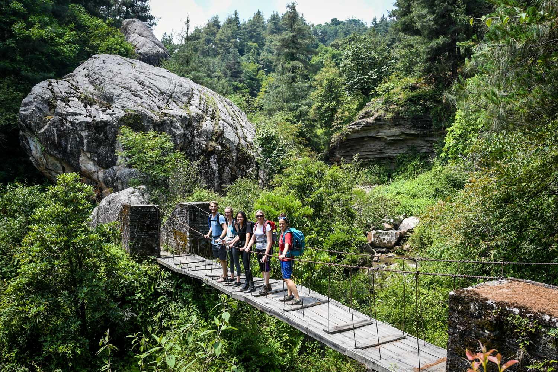 Mohare Danda Trek Wooden Bridge
