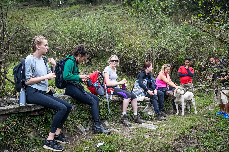 Mohare Danda Trek Rest Stop