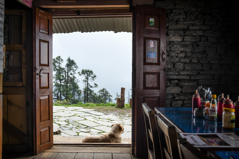 Mohare Danda Trek Inside the Lodge