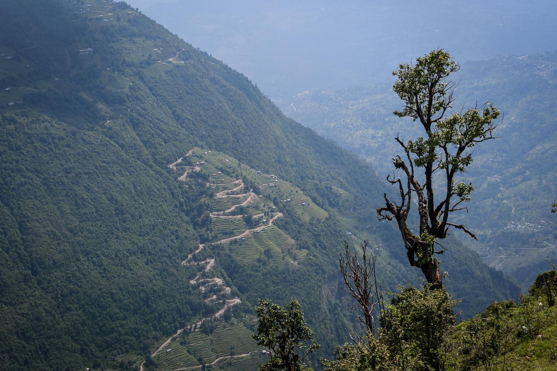 Mohare Danda Trek Zig Zag Road Nepal