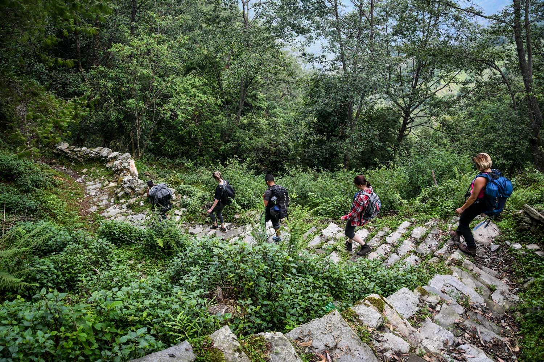 Mohare Danda Trek Hiking Down Hill