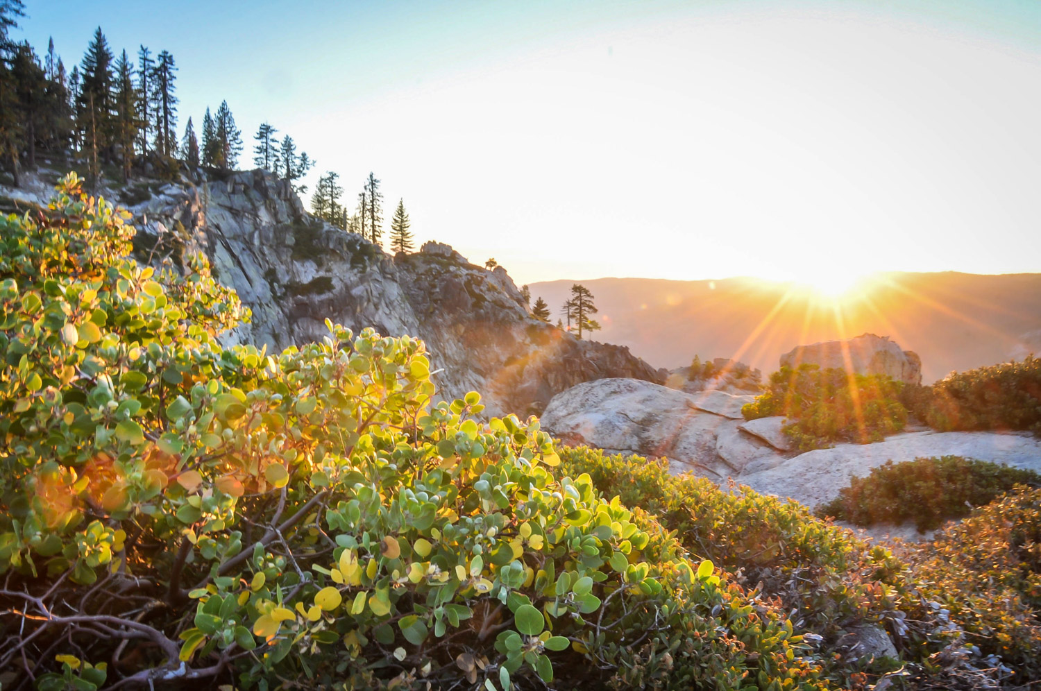 Road Trip Planner Backcountry Yosemite National Park
