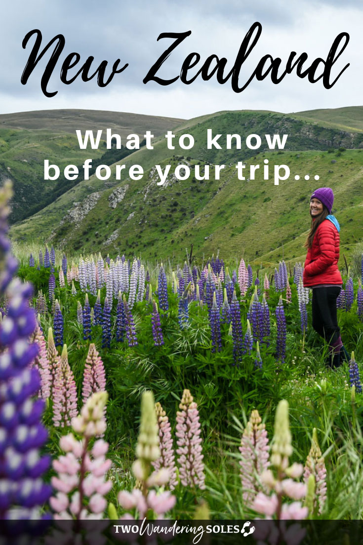New Zealand Travels: What to know before your trip