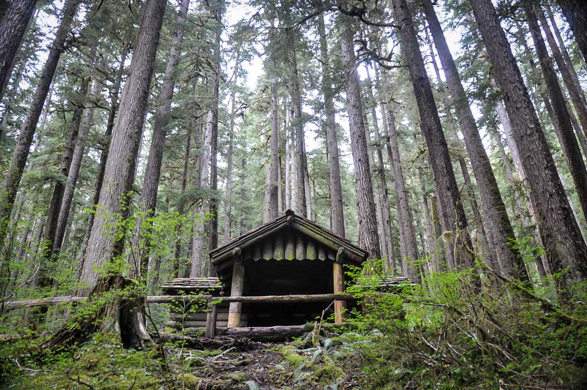 Olympic National Park Road Trip Route