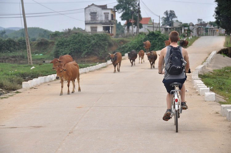 Sustainable Travel bike