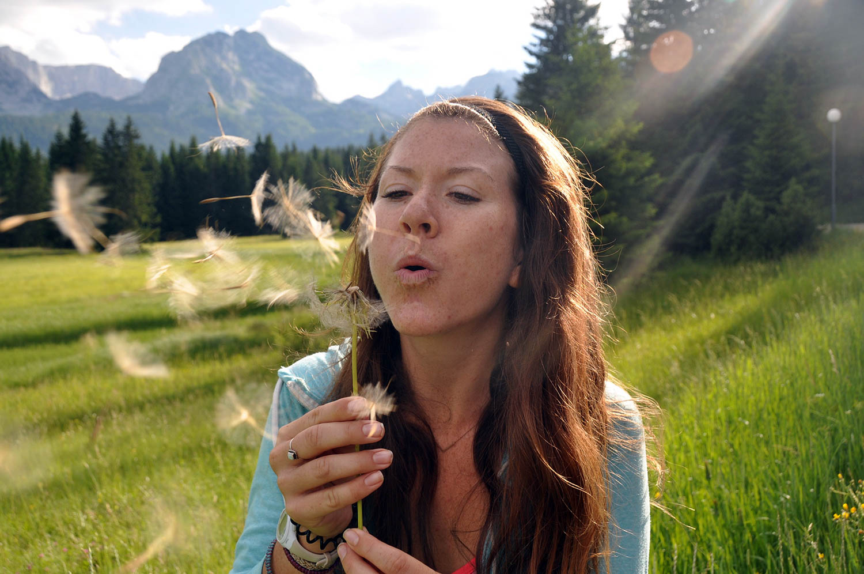 Dandelion Blow Wind Zabljak Montenegro