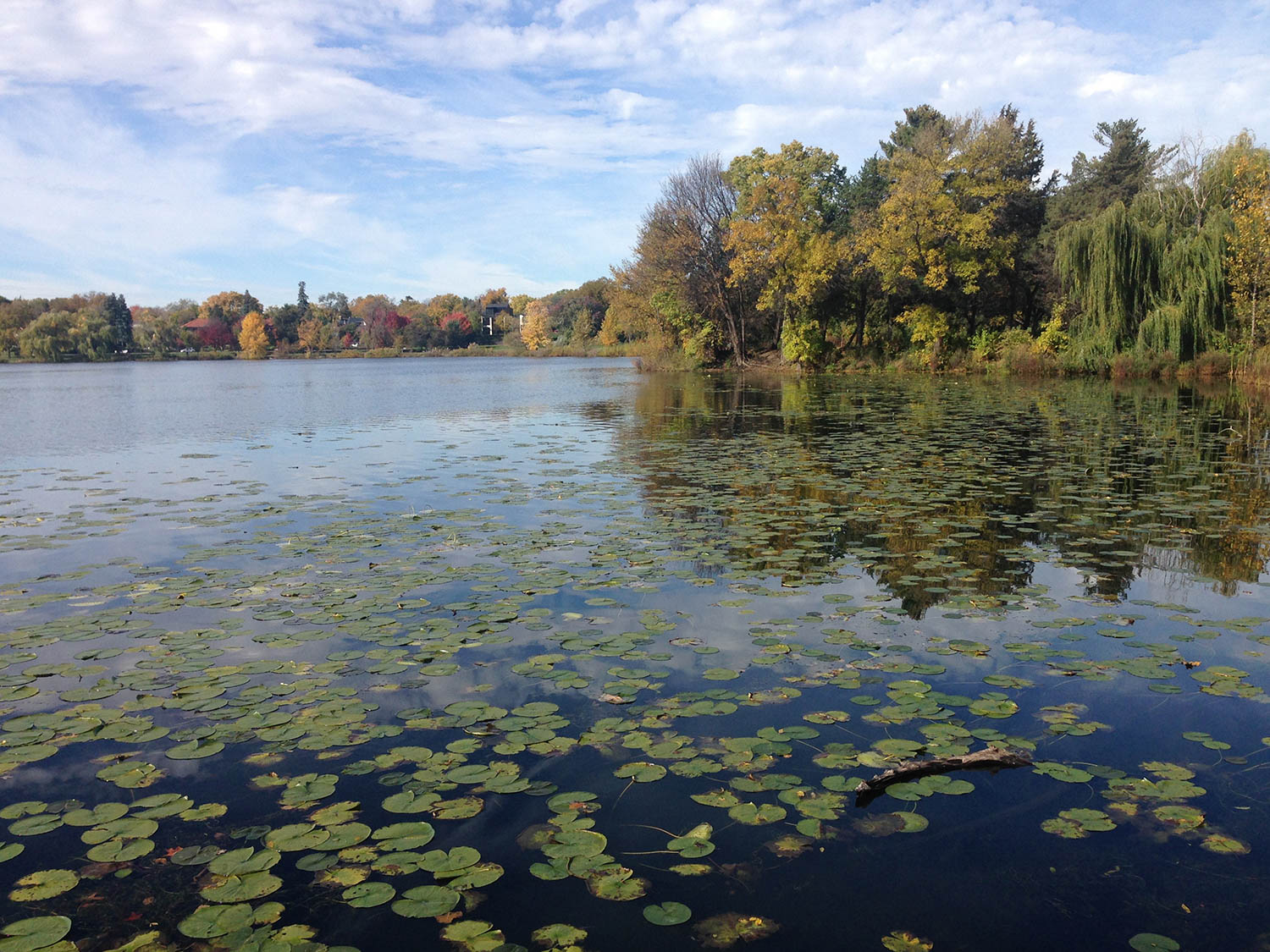 Fun things to do in Minnesota in the Fall