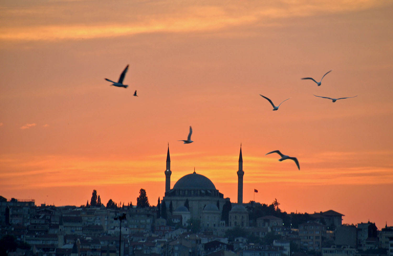 Things to Do in Istanbul | Sunset on Galata Bridge