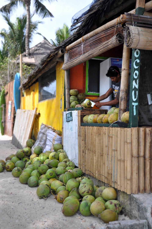 Boracay Coconuts