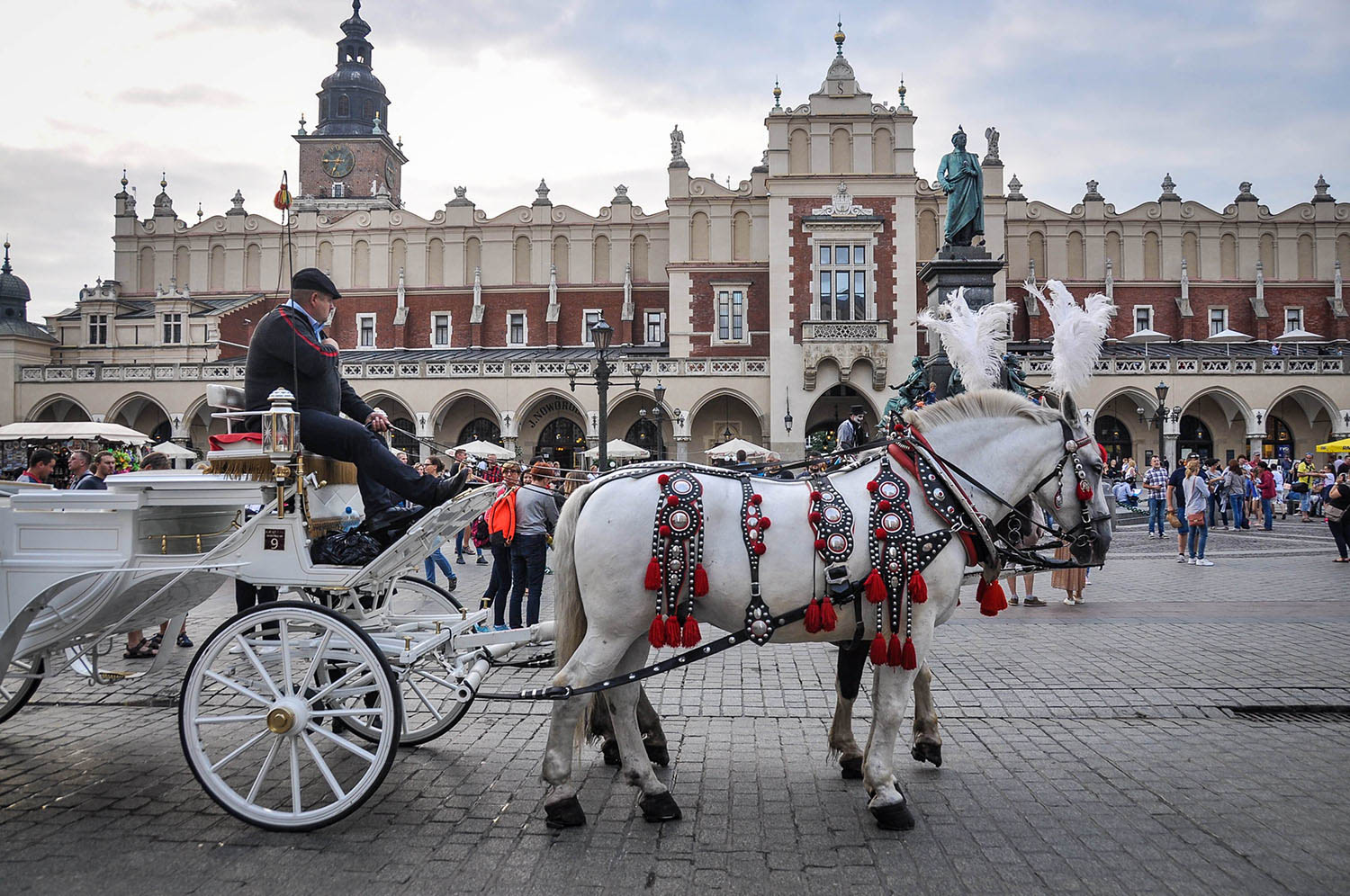 Countries to Teach English Poland Horse and Carriage