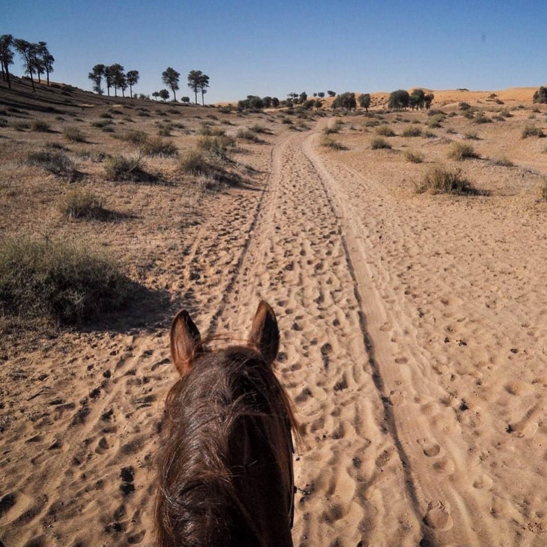 Ritz Carlton Al Wadi Desert Ras Al Khaimah Horseback Riding