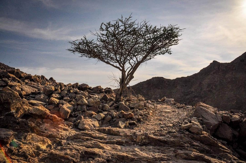 Ras Al Khaimah Sustainable Tourism