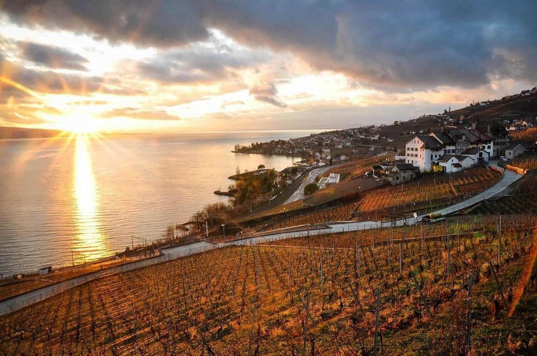 Montreux Riviera Winery in Winter Switzerland Sustainable Tourism