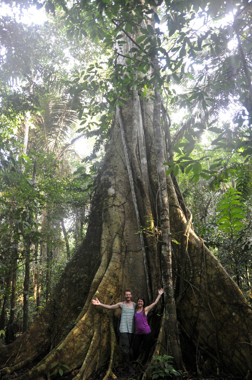 Amazon Jungle in Bolivia