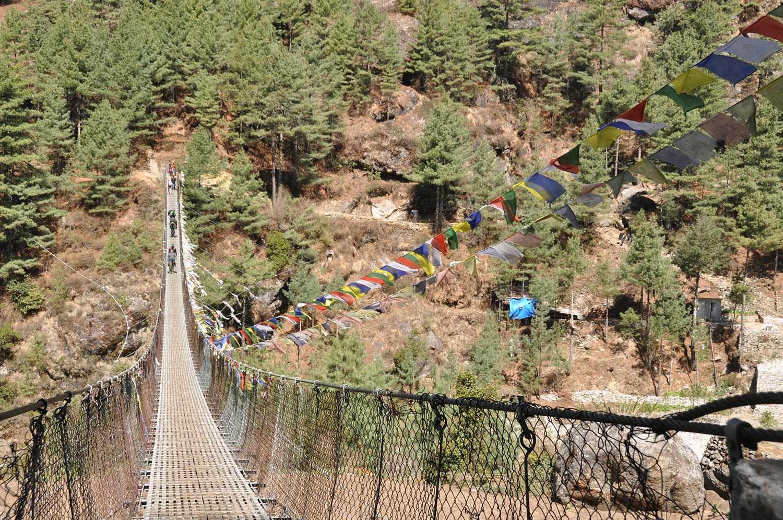 Suspension bridge butterflies
