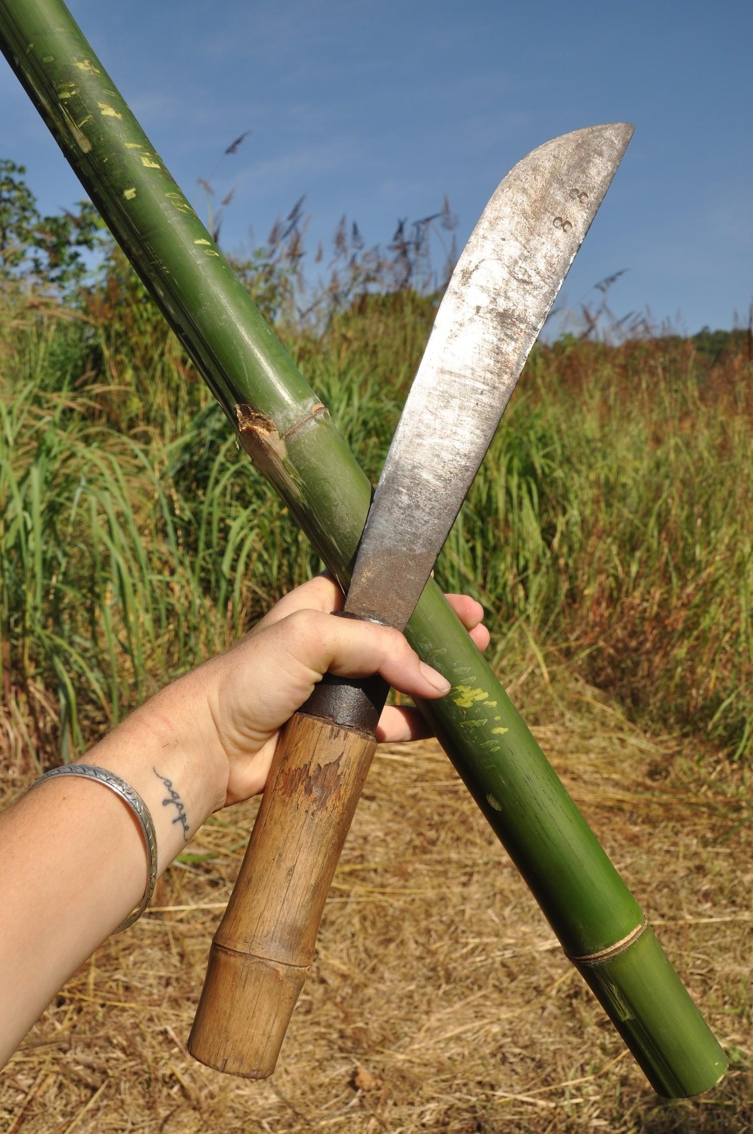 Bamboo Machete WOOF Workaway Pai
