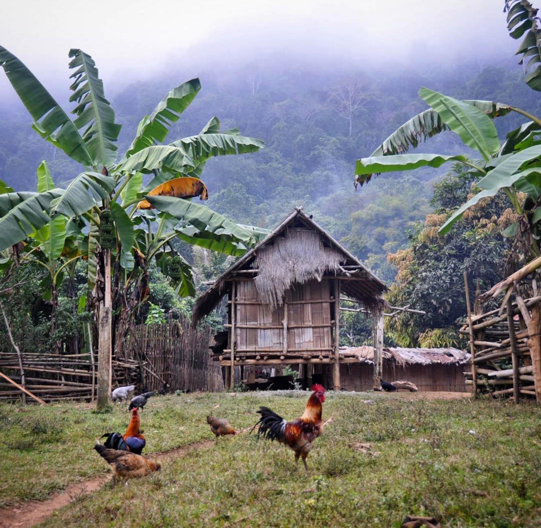 H'mong Village Homestay Laos