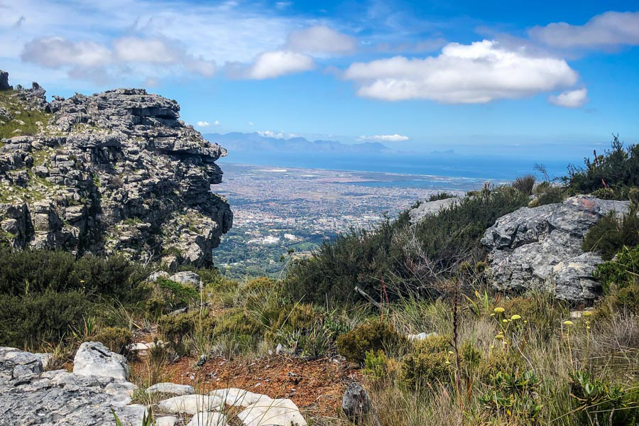 Things to do in Cape Town   Lions Head
