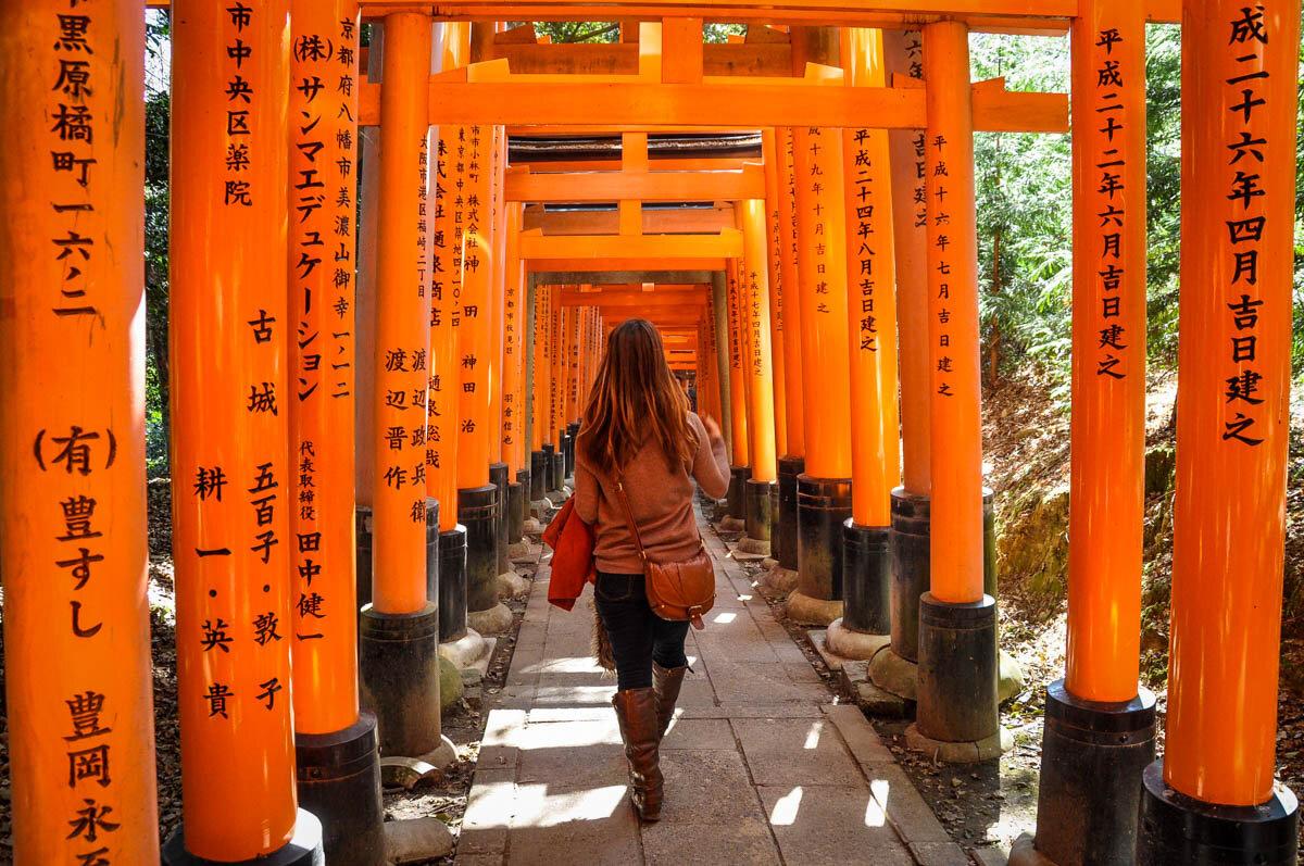 Japan Pocket Wifi vs SIM Card Orange Gates