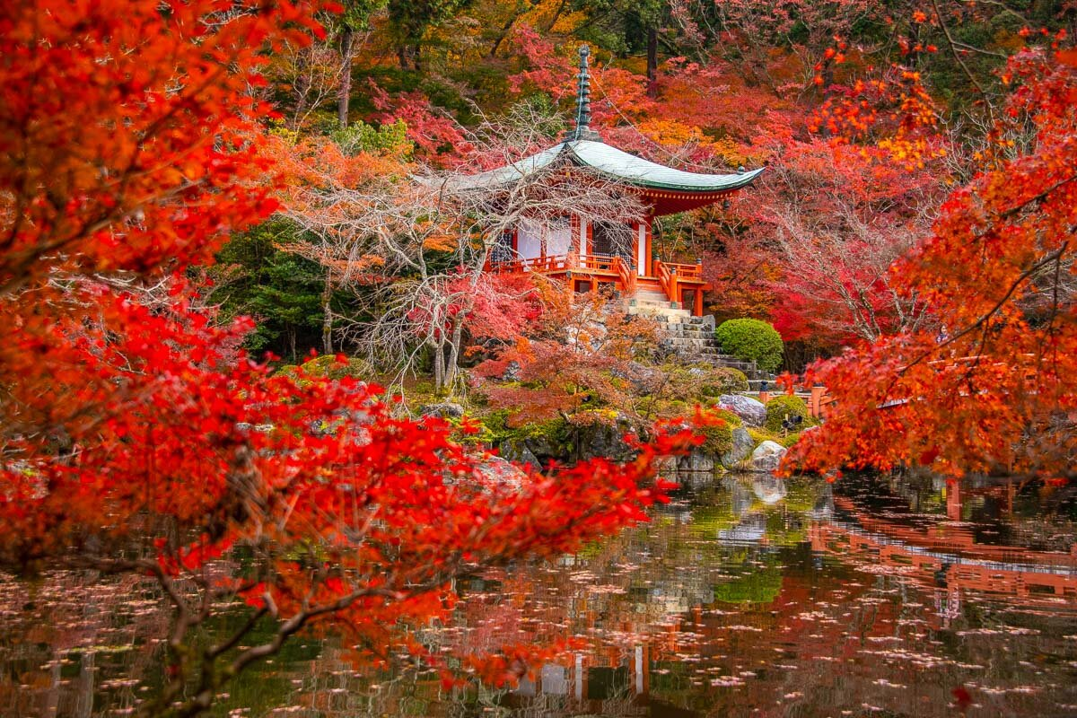 Kyoto in Autumn - Photo Credit: Alex Waltner /  Swedishnomad.com