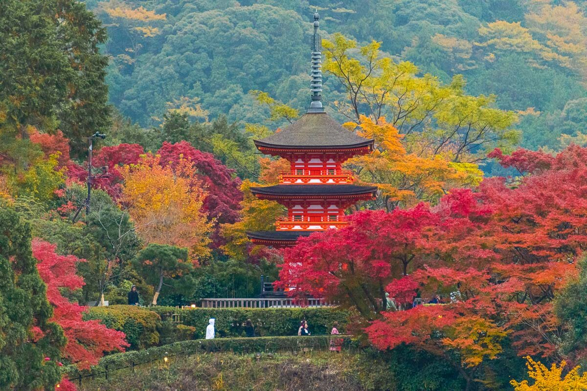 Kiyomizu Dera in Autumn - Photo Credit: Alex Waltner / Swedishnomad.com