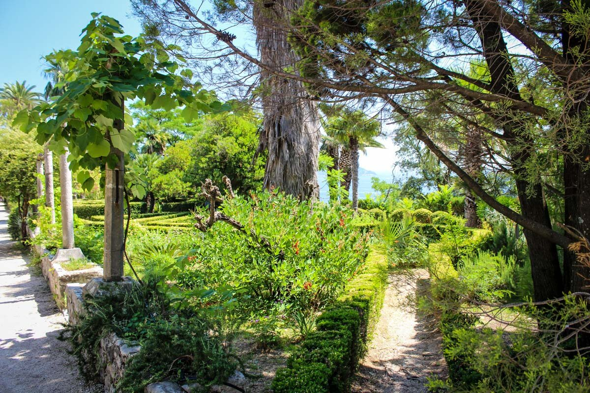 Things to Do in Dubrovnik | Trsteno Arboretum