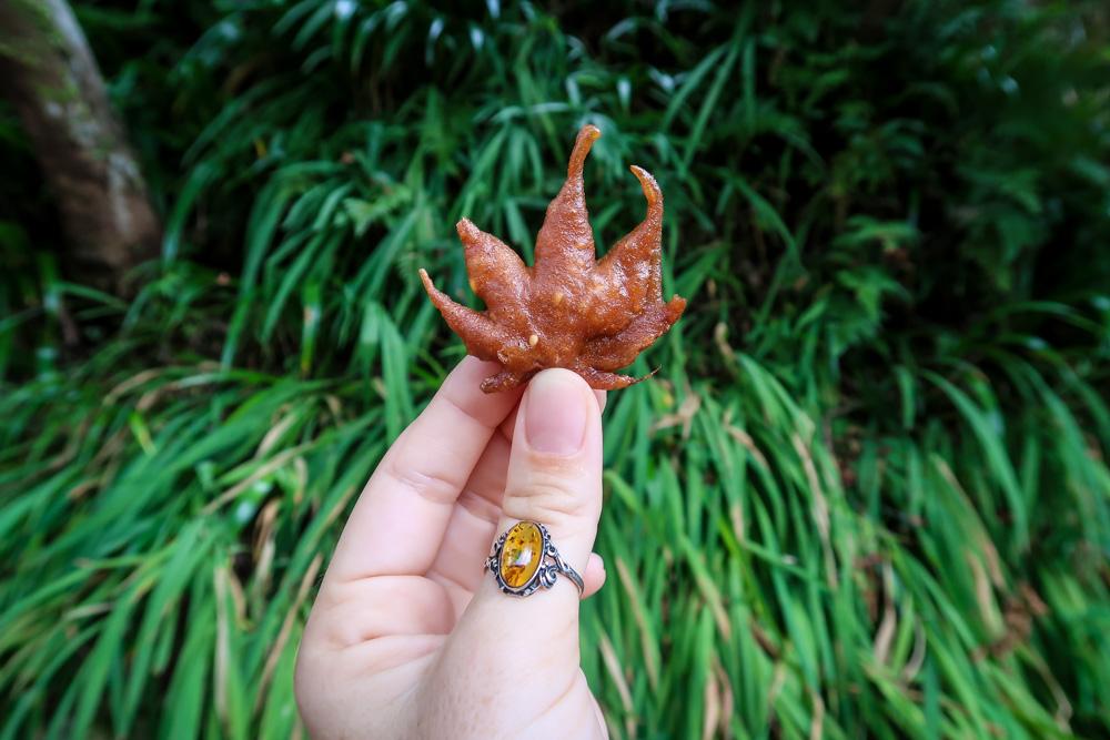 Japanese Food Minoo Park deep fried maple leaves