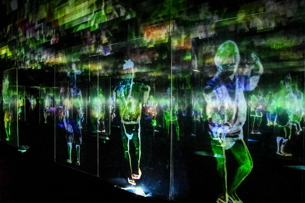 teamLab Borderless Tokyo Guide Peace can be Realized Even Without Order
