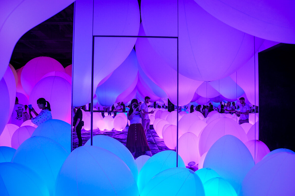 teamLab Borderless Tokyo Guide Weightless Forest of Resonating Life