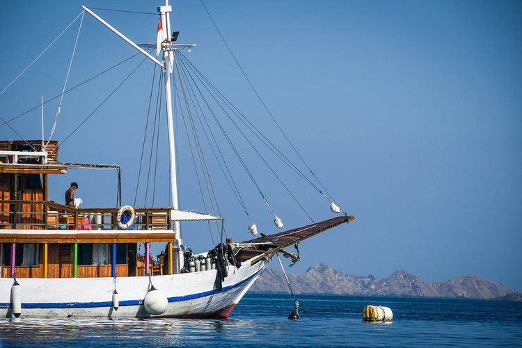 Everything You Need to Know About Doing a Liveaboard Dive Trip | Two Wandering Soles