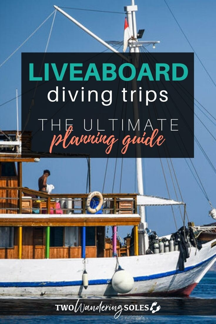 Planning a Liveaboard Diving Trip: Everything You Need to Know | Two Wandering Soles