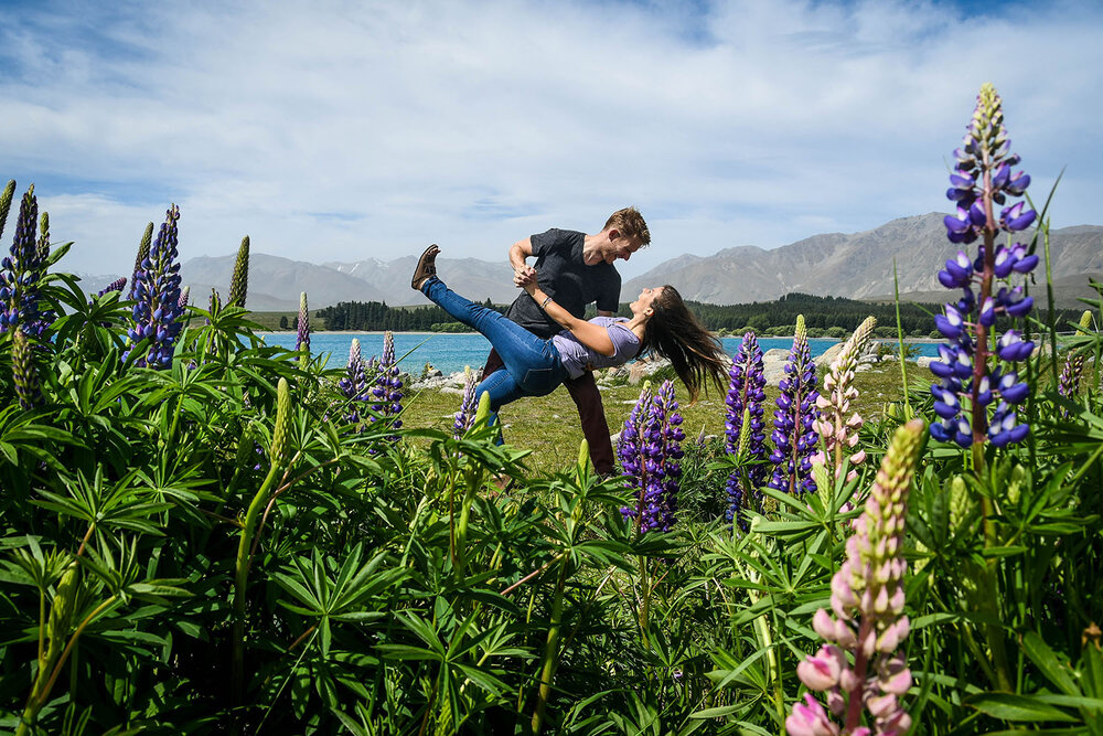 Best Time to Visit New Zealand | Lake Tekapo Lupines, South Island