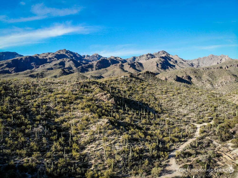 Things to Do in Tucson Sabino Canyon
