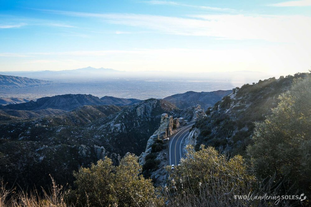 Things to Do in Tucson Mount Lemmon