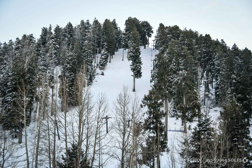 Things to Do in Tucson Mount Lemmon Ski Valley