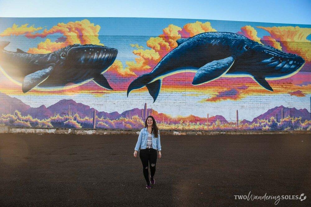 Whale Mural Tucson Street Art