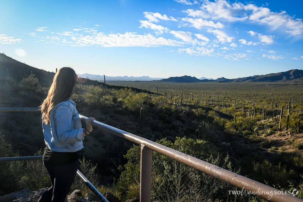 Things to do in Tucson Gates Pass Viewpoint