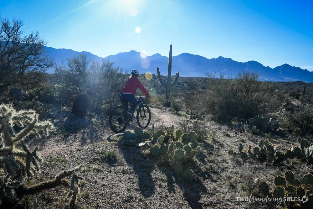 Things to do in Tucson Mountain Biking