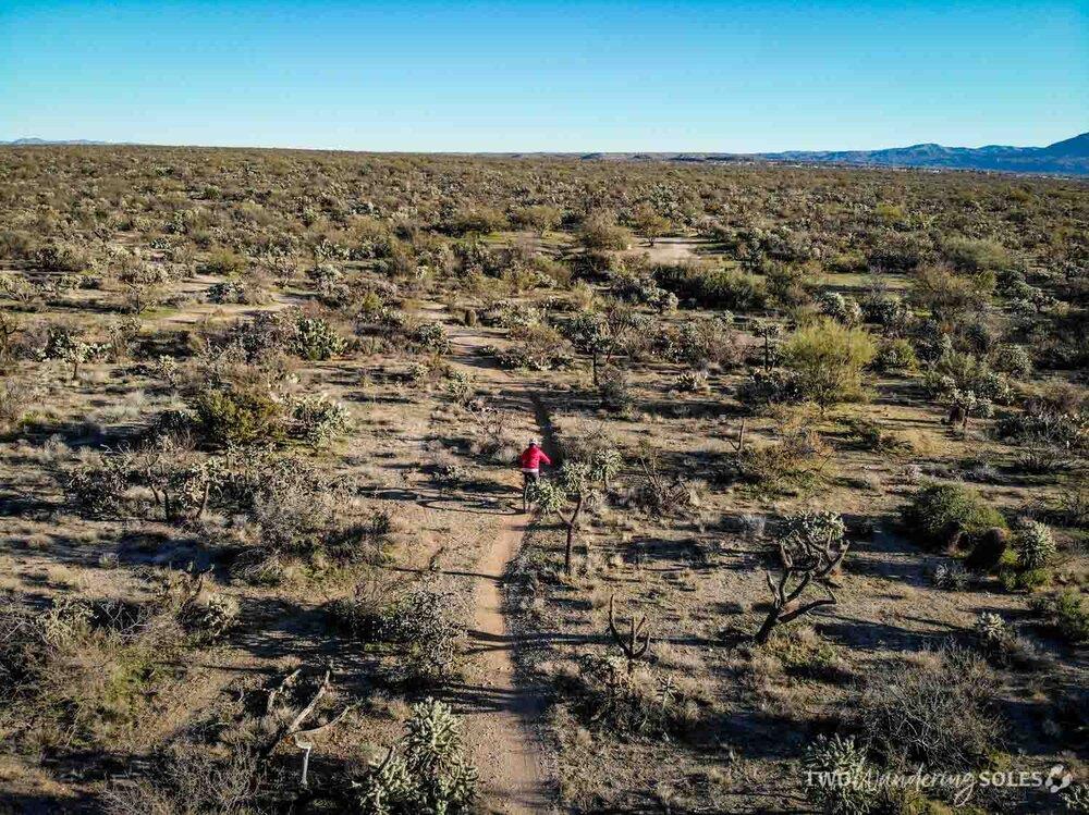 Things to do in Tucson Mountain Biking